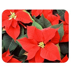 Poinsettia Double Sided Flano Blanket (medium)  by trendistuff