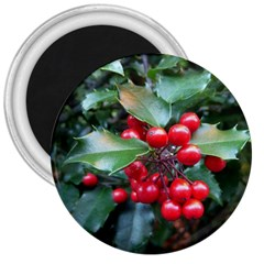 Holly 1 3  Magnets by trendistuff