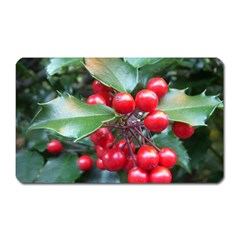 HOLLY 1 Magnet (Rectangular) by trendistuff