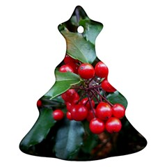 Holly 1 Ornament (christmas Tree) by trendistuff