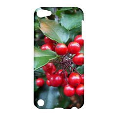 Holly 1 Apple Ipod Touch 5 Hardshell Case by trendistuff