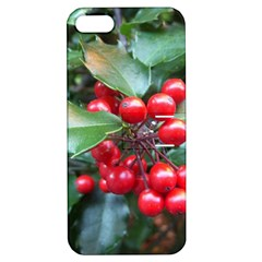 Holly 1 Apple Iphone 5 Hardshell Case With Stand by trendistuff