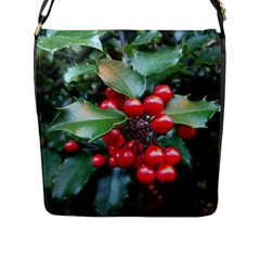 Holly 1 Flap Messenger Bag (l)  by trendistuff