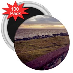 Playa Verde Coast In Montevideo Uruguay 3  Magnets (100 Pack) by dflcprints
