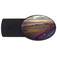 Playa Verde Coast In Montevideo Uruguay USB Flash Drive Oval (2 GB)  by dflcprints