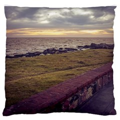 Playa Verde Coast In Montevideo Uruguay Standard Flano Cushion Cases (Two Sides)  by dflcprints