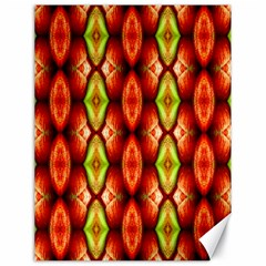 Melons Pattern Abstract Canvas 18  X 24
