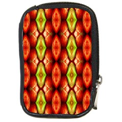 Melons Pattern Abstract Compact Camera Cases by Costasonlineshop