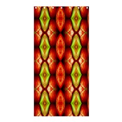 Melons Pattern Abstract Shower Curtain 36  X 72  (stall)