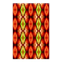 Melons Pattern Abstract Shower Curtain 48  X 72  (small)