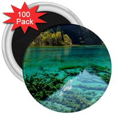 Jiuzhaigou Valley 2 3  Magnets (100 Pack) by trendistuff