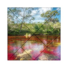 CANO CRISTALES 3 Acrylic Tangram Puzzle (6  x 6 ) by trendistuff