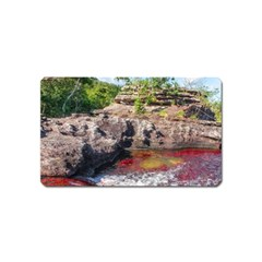 CANO CRISTALES 2 Magnet (Name Card) by trendistuff