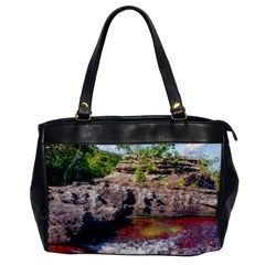 Cano Cristales 2 Office Handbags by trendistuff