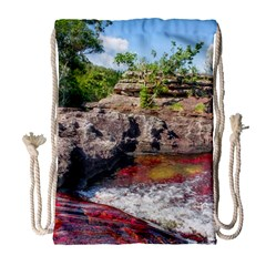 Cano Cristales 2 Drawstring Bag (large) by trendistuff