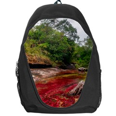 Cano Cristales 1 Backpack Bag by trendistuff