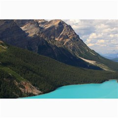 BANFF NATIONAL PARK 3 Collage 12  x 18  by trendistuff
