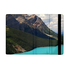 Banff National Park 3 Apple Ipad Mini Flip Case by trendistuff