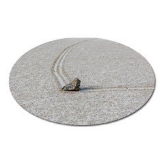 Sailing Stones Oval Magnet by trendistuff