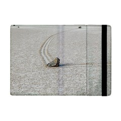 Sailing Stones Ipad Mini 2 Flip Cases by trendistuff
