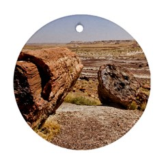 Petrified Desert Ornament (round)  by trendistuff