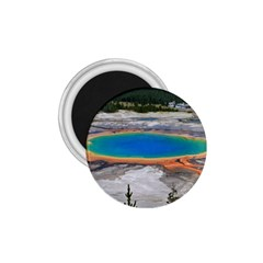 Grand Prismatic 1 75  Magnets by trendistuff
