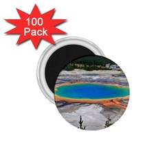 Grand Prismatic 1 75  Magnets (100 Pack)  by trendistuff