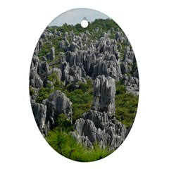 Stone Forest 1 Oval Ornament (two Sides) by trendistuff