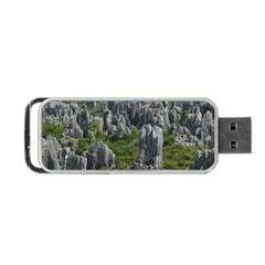 Stone Forest 1 Portable Usb Flash (two Sides) by trendistuff