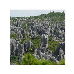 Stone Forest 1 Small Satin Scarf (square)  by trendistuff