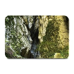 Mountain Path Plate Mats by trendistuff