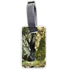 Mountain Path Luggage Tags (one Side)  by trendistuff