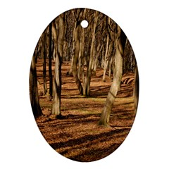 Wood Shadows Oval Ornament (two Sides) by trendistuff