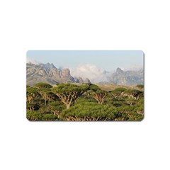 SOCOTRA, YEMEN Magnet (Name Card) by trendistuff