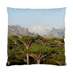 Socotra, Yemen Standard Cushion Cases (two Sides)  by trendistuff