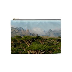 Socotra, Yemen Cosmetic Bag (medium)  by trendistuff