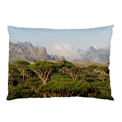 Socotra, Yemen Pillow Cases (two Sides) by trendistuff