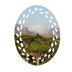Socotra, Yemen Oval Filigree Ornament (2 Side)  by trendistuff