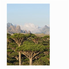 Socotra, Yemen Small Garden Flag (two Sides) by trendistuff