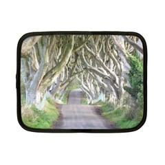 Dark Hedges, Ireland Netbook Case (small)  by trendistuff