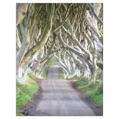 Dark Hedges, Ireland Drawstring Bag (large) by trendistuff