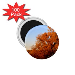 Beautiful Autumn Day 1 75  Magnets (100 Pack)  by trendistuff