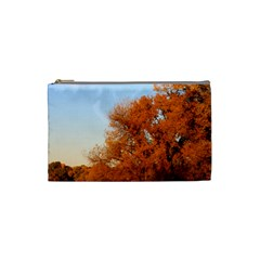 Beautiful Autumn Day Cosmetic Bag (small)  by trendistuff