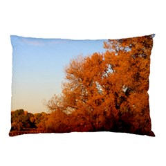 Beautiful Autumn Day Pillow Cases (two Sides) by trendistuff