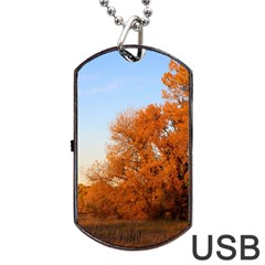 Beautiful Autumn Day Dog Tag Usb Flash (two Sides)  by trendistuff