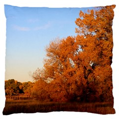 BEAUTIFUL AUTUMN DAY Large Flano Cushion Cases (One Side)  by trendistuff