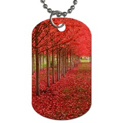 Avenue Of Trees Dog Tag (two Sides) by trendistuff
