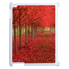 Avenue Of Trees Apple Ipad 2 Case (white) by trendistuff