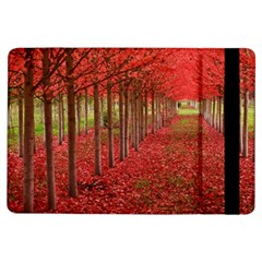 Avenue Of Trees Ipad Air Flip by trendistuff