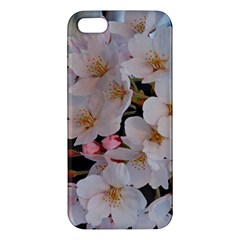 Sakura Apple Iphone 5 Premium Hardshell Case by trendistuff
